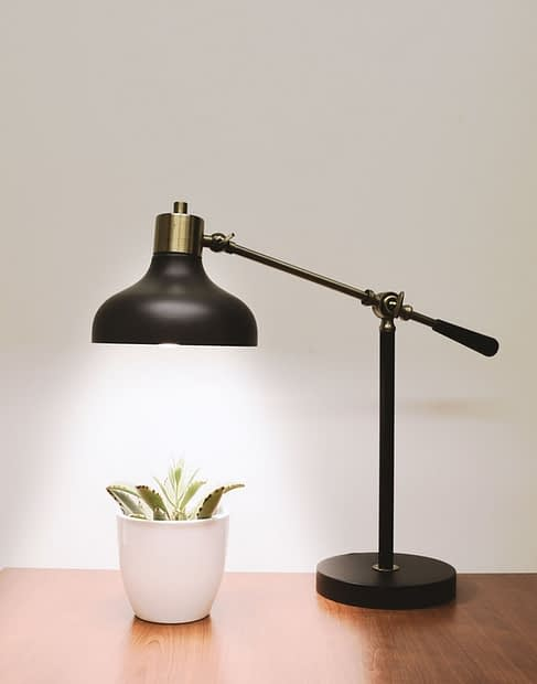 light plant