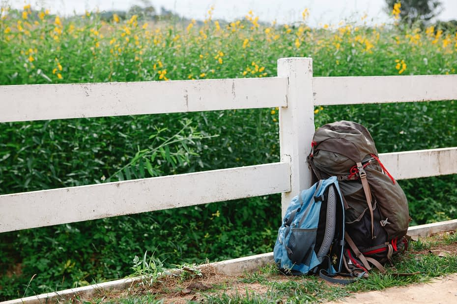 rucksacks leaned on fence near lush meadow